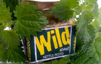 Wild about Nettle Pesto image