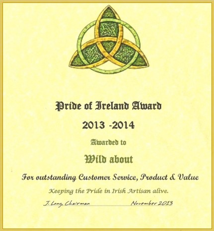 Pride of Ireland Award for Outstanding Customer Service, Product & Value image
