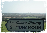Wild about Monamolin, Co. Wexford road sign image